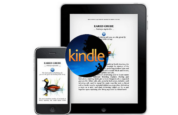 How to Buy and read Kindle Books on iPhone and iPad | PDFMate
