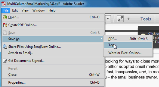 adobe export pdf to word
